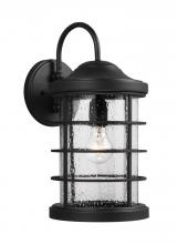 Sea Gull 8624401-12 - One Light Outdoor Wall